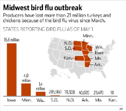 Iowa Declares State Of Emergency As Bird Flu Outbreak Spreads - Flu map us